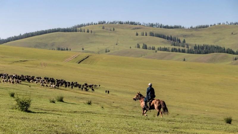 Монголын богино өгүүллэгийн мастерын 10 богино өгүүллэг (2-р хэсэг)
