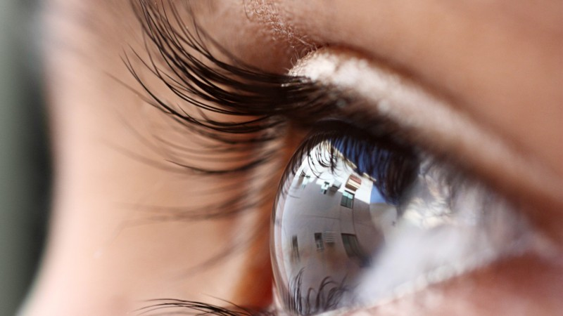 Нүдний тухай сонирхолтой 10 баримт