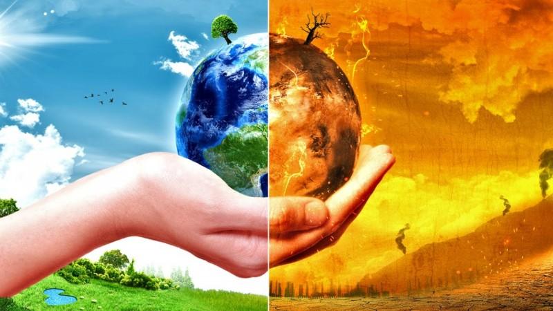 Дэлхийн дулаарлын эсрэг бид юу хийж чадах вэ?