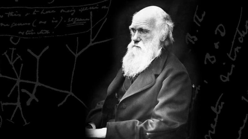 Чарльз Дарвины тухай сонирхолтой баримтууд