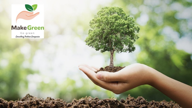 Мод тарих зөвлөгөө